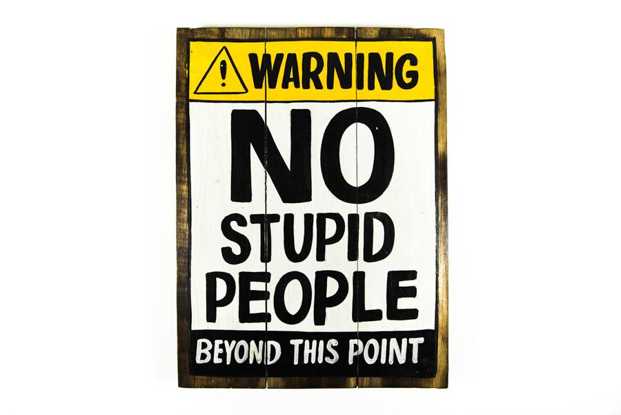 chapa-gente-estupida